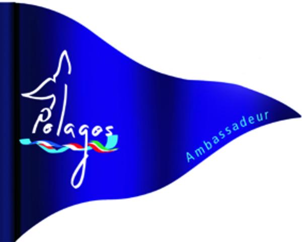 devenezambassadeurpelagos_drapeau_bd.jpg